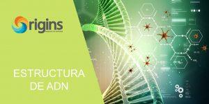 Estructura-ADN-portada
