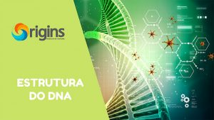 Estrutura-do-DNA